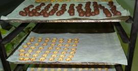 Kakaoa ere erabiltzen dugu pasta batzuk egiteko, mota guztietakoak aurkituko dituzu!